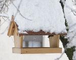 Nowe, zakupione w sklepie budki dla ptaków bądź zadaszone karmniki są zazwyczaj wykonane z surowego drewna, które należy prawidłowo zabezpieczyć..jpg